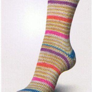 regia-iglu-color-08987