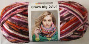 Schachenmayr Bravo Big Color Farbe 93