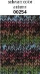 Schachenmayr Wash+Filz-it! Multicolor Fb.254