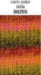 Schachenmayr Wash+Filz-it! Multicolor Fb.255